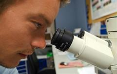Biomedical Science / Laboratory Techniques
