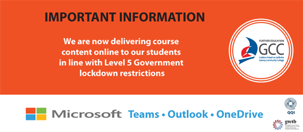 Online Learning due to Level 5 Government Restrictions